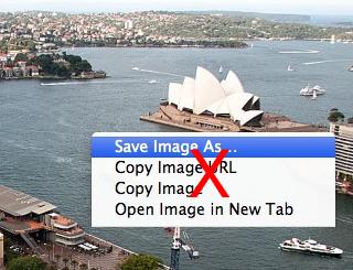 Image Copy Prevention Screenshot