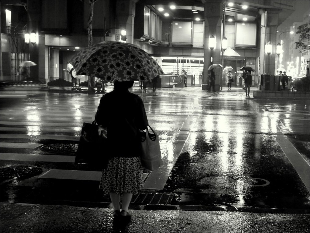 Woman with umbrella at crossing on rainy night